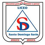 LICEO SANTO DOMINGO SAVIO - ARAUCA